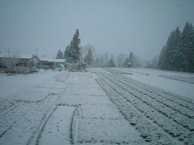 38)雪景色の秋田県内(1).JPG