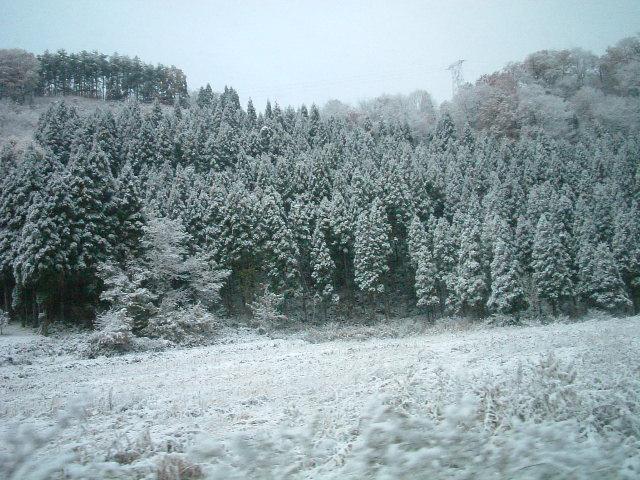 43)雪景色の秋田県内(6).JPG